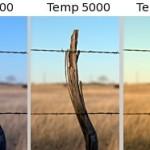 Fehéregyensúly beállítás – viszlát, sárga fotók!